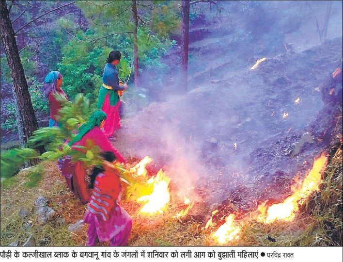 Forest Fires of Uttarakhand 02